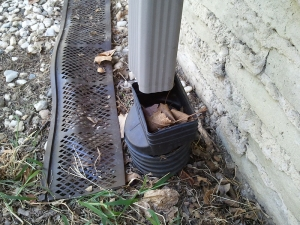 Disconnected Downspout