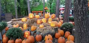 Silver Dollar City: Pumpkin Nights