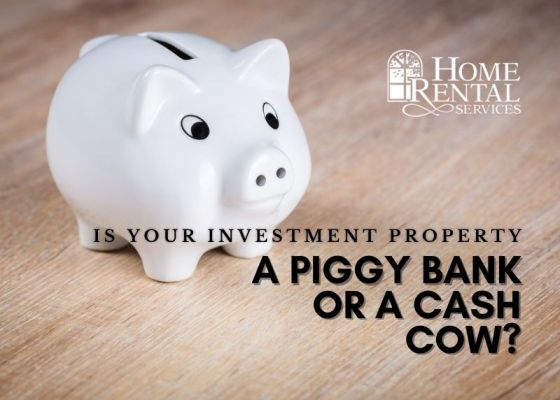 Piggy Bank or Cash Cow?